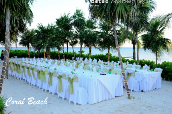 barcelo-weddings-2016-photos-0365EC55FA2-BB26-834A-AC87-394723DCC011.png