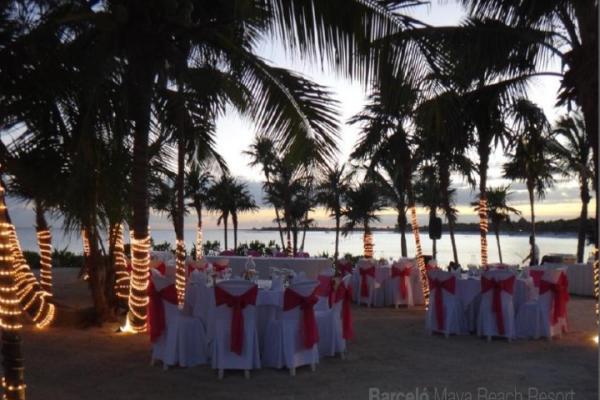 barcelo-weddings-2016-photos-03897E7459F-FD78-E9B7-71D7-6DAC45A65C8D.png