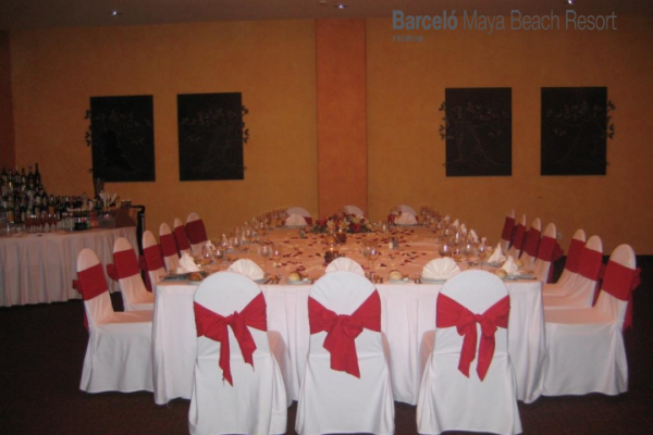 barcelo-weddings-2016-photos-05772E2720D-BFA4-232B-ED73-52F31152B1C8.png